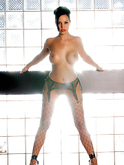 Tiffany Fallon is Playmate of the Year 2005, and we've got 60 pictorials and 75 videos of Tiffany to commemorate the occasion....
